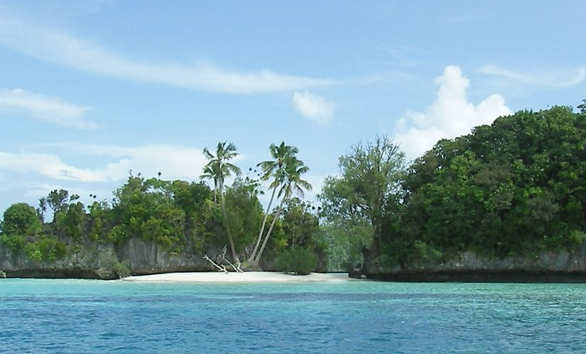 New Case Study: Palau Telecom